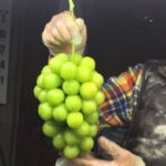 日本農業大賞